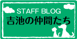 吉池獣医科病院スタッフブログ