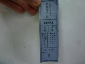 P1030313